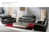Modernes ledernes Sofa mit echtes Leder-Sofa
