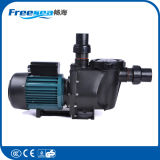 Water filter pump for Commercial Swimming pool