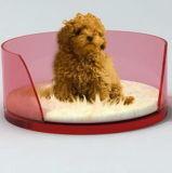 Base curvada acrílica do espaço livre oval da forma para o cão
