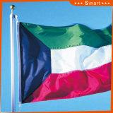 Su ordinazione impermeabilizzare e modello no. della bandiera nazionale del Kuwait della bandiera nazionale di Sunproof: NF-043