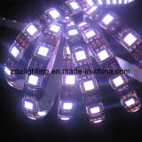 12V-24V 60LEDs/M SMD5050 raffreddano la striscia flessibile bianca dell'indicatore luminoso di 6000k LED