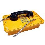 Telefono industriale del telefono resistente all'intemperie del telefono di VoIP con la visualizzazione dell'affissione a cristalli liquidi
