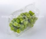 Caixa de bolha de fruta verde descartável para animais de estimação