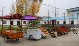 移動式電気食糧を販売する通りはアイスクリームのカートのコーヒーカートを運ぶ