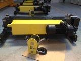 Élévateur électrique de type européen de câble métallique de l'Allemagne 5ton (BMG-05092mm5)