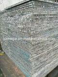 Personalizzare i comitati del favo di Alumium per i divisorii ed i locali senza polvere