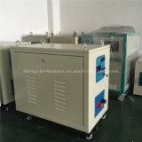 Het Verwarmen van de Inductie van Superaudio de Verwarmer van de Inductie van de Machine (zxs-100AB)