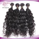 Extensão brasileira do cabelo humano da onda natural