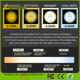 UL LEDの蝋燭の球根E12 6W 7W 3000k LEDライト