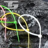Individu verrouillant les serres-câble en nylon avec l'étiquette