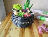 (BC-WF1007) Чисто Handmade естественная корзина цветка вербы