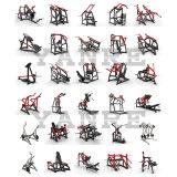 Force transversale de marteau de matériel de forme physique de gymnastique chargée par plaque d'enroulement de patte d'OIN
