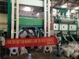 곡물 공장을%s Hons+ 고품질 5000 화소 CCD Grian 색깔 분류하는 사람