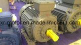 motor elétrico da indução 200kw trifásica para a bomba de água