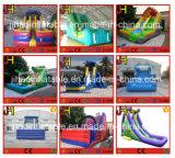 Горячим подгонянное летом раздувное скольжение воды для малышей и взрослых