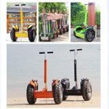 Form-Sport-elektrischer Roller, Wind-Vagabund-elektrischer Roller V5+
