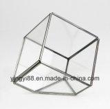 Оптовый стеклянный геометрический Terrarium для висеть