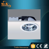 O preço de fábrica Não-Cintila luzes que do ponto o diodo emissor de luz se ilumina para baixo