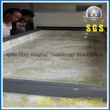 Máquina de molde de estratificação do vácuo da porta de Wenqi da máquina do vácuo
