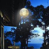 Свет новой конструкции неразъемный солнечный на IP 68 освещения сада или лужайки