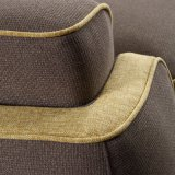 Sofà del tessuto del salone di disegno moderno per la mobilia della camera da letto dell'hotel - Fb1148
