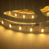 Striscia di IP65 12V SMD5025 LED