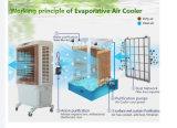 Anerkannter Hersteller-Verdampfungsstandplatz-Luft-Kühlvorrichtung-Befeuchter-Ventilator