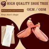 على نحو واسع يستعمل [إيوروبن] خشبيّة حذاء شجرة أن يحافظ أحذية شكل