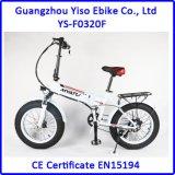 nuevo diseño 36V bici gorda eléctrica de la nieve de 20 pulgadas