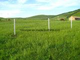 Ячеистая сеть загородки утюга поля/злаковика/загородка овец/загородка оленей