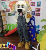 Traje de carnaval criativo do cão pequeno para a atividade