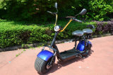 1000W New Wolf Electric Bike com Silent Controller