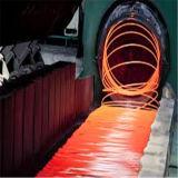 Провод штанга стали сплава Sea1006 госпожи Основн Китая горячекатаный Sea1008