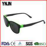Выдвиженческие солнечные очки магнита высокого качества UV400 Ynjn имеют логос (YJ-2117)