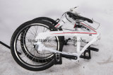 Vélo se pliant des 3 vitesses intérieure 20 '', bicyclette se pliante de vente en gros de la Chine