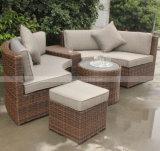 Insieme della mobilia del giardino del rattan e mobilia esterni del patio