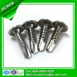 10 # Wafer Head Philips Self Drilling Screw