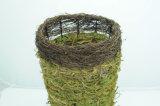 Potenciômetro de flor Handmade natural do musgo verde