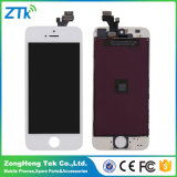 Schermo dell'affissione a cristalli liquidi del telefono mobile del AAA del grado per il iPhone 5, convertitore analogico/digitale dell'affissione a cristalli liquidi 5s