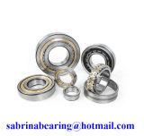 Roulement à rouleaux cylindrique (N224ECM)