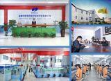 Chargeur rapide portatif de C.C EV de vente en gros d'usine de la Chine