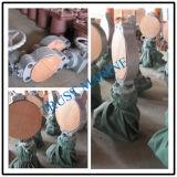 Valvola di ritenuta del bronzo del getto del fante di marina/valvola a saracinesca marina