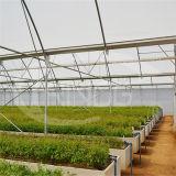 Фабрика продавая аграрный парник Multi-Пяди с крышкой полиэтиленовой пленки качества Anti-Fogging