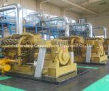 central eléctrica de la gasificación de la biomasa del equipo de la cogeneración 10kw-600kw