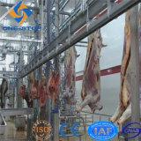 Linha maquinaria da chacina do gado de Cpmplete do equipamento