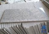 G603 Grijs Wit Graniet voor de Tegel of de Straatsteen van de Vloer