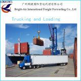 Transporte barato de Cbm LCL/FCL do preço do transporte do frete do mar/oceano de Guangzhou China a Felixstowe BRITÂNICO/Southampton/Londres/Manchester/Ipswich/Plymouth/Liverpool