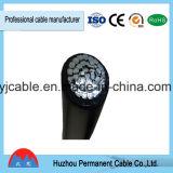 Fil électrique à un noyau de qualité fiable et prix de câble de la BV