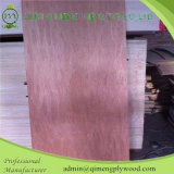 専門的にExporting 3 ' Cheap Priceのx7 Bintangor Plywood