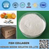 Alimentos / calidad cosmética colágeno de los pescados